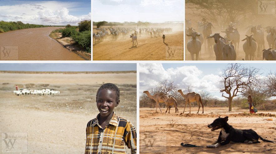 kenya north eastern garissa dadaab wajir mulanjo sheepfold ministries drought famine humanitarian emergency arid tana river goats waterhole animals camels survival 14820 15555 15556a 13839 14855 Building Hope in the Face of Drought (Sheepfold Ministries)